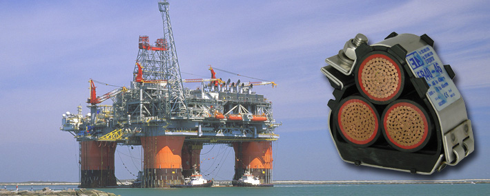 Cable cleats for offshore environments